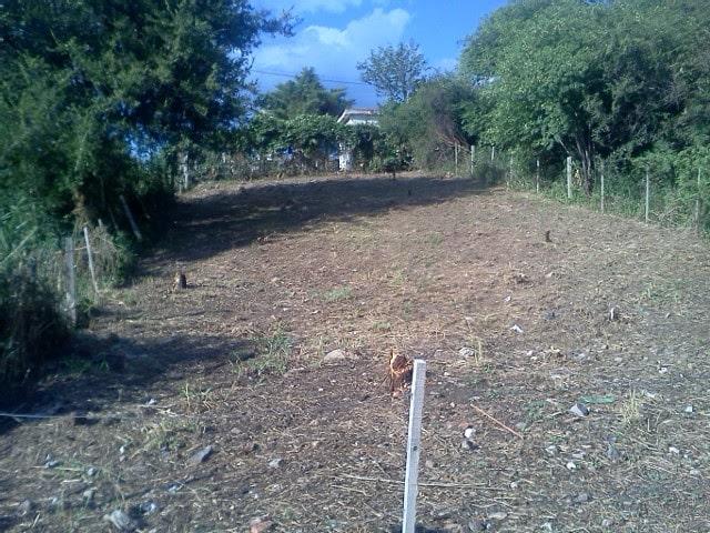 GVPROP VENDE TERRENO EN UNQUILLO ZONA DE VILLA FORCHIERI » SUP TOTAL 280 MTS